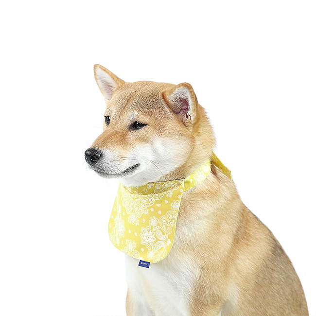 seoul-pet-PAISLEY SCARF-BIB [YELLOW]♡寵物配件