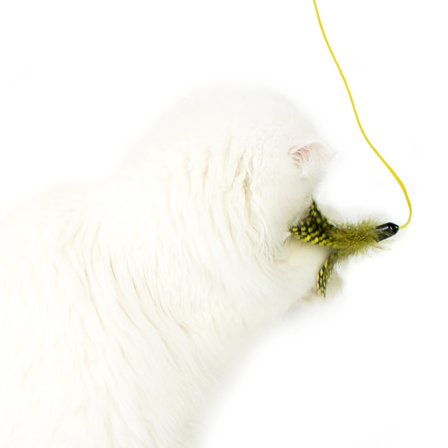 seoul-pet-FEATHER HUNTING TOY [YELLOW]♡寵物配件