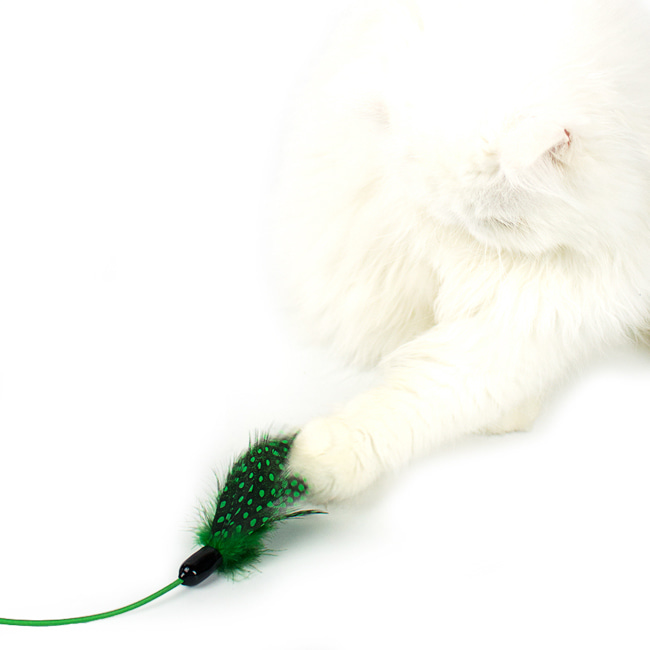seoul-pet-FEATHER HUNTING TOY [GREEN]♡寵物配件