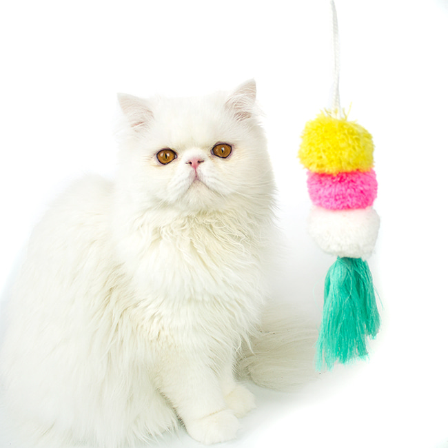 seoul-pet-COTTON BALL TOY [PINK]♡寵物配件