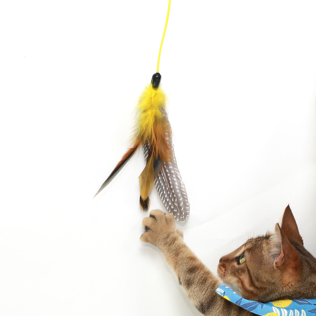 seoul-pet-FEATHER HUNTING TOY  [NATURAL YELLOW]♡寵物配件