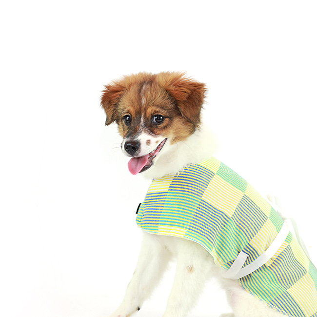 seoul-pet-CHECK PATCH ROBE [YELLOW]♡寵物衫