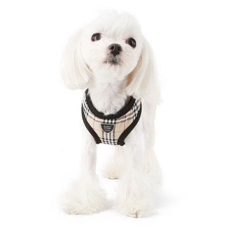 puppyangel-[HA048]퍼피엔젤 강아지하네스(#34베이지)♡寵物散步帶用品
