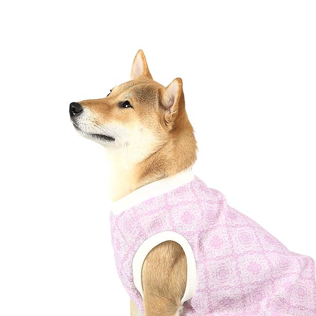 seoul-pet-SEOUL PET기본 레이아웃♡寵物衫